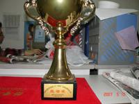 """南京市建设工程""""金陵杯""""装饰装修优质工程荣誉奖"""