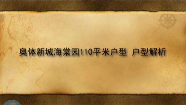 奥体新城海棠园110平米视频户型解析