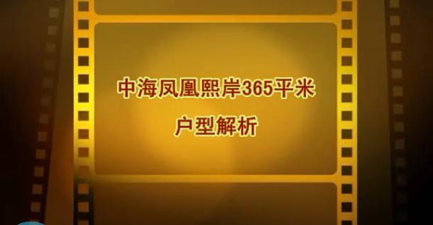 中海凤凰熙岸H1户型365平米视频户型解析