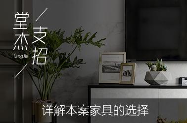 堂杰支招-本案家具选择