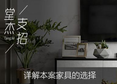 堂杰支招-本案家具選擇