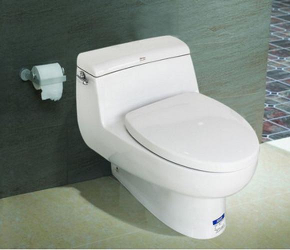 IDS自然风格连体座厕