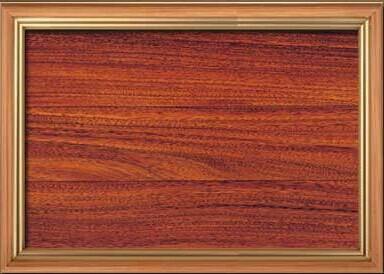 泛美地热原木地板圆盘豆