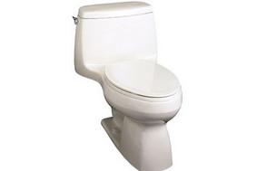 科勒圣罗莎连体坐厕