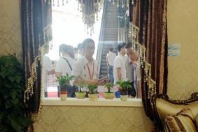 大展-欧式客厅窗帘