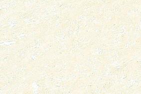 精工砖BT388-8*8