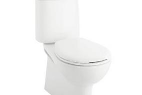 新迷你节水型分体座厕