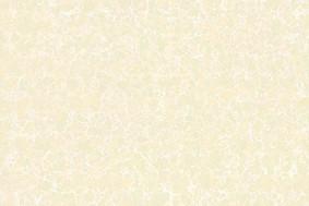 普拉提-抛光砖800*800