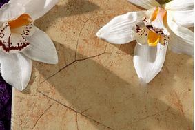 马可波罗瓷砖枫叶石