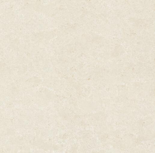 马可波罗瓷砖郁金香